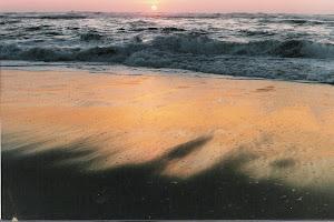 la mer de l'autre côté de la Ria,o artista que pintou ardentemente esta obra foi o meu amigo Sol.