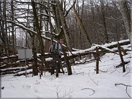 Cruzamos la alambrada bajo los farallones