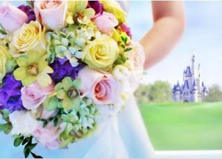 Brinde Gratis DVD Gratis Casamento na Disney