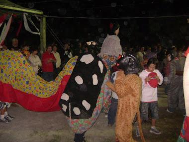Boi-de-mamão na Festa do Divino de 2008