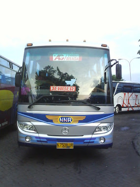 nnr mp setra