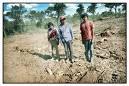 LA REPÚBLICA UNIDA DE LA SOJA: CRÓNICA DE UN DESASTRE ANUNCIADO