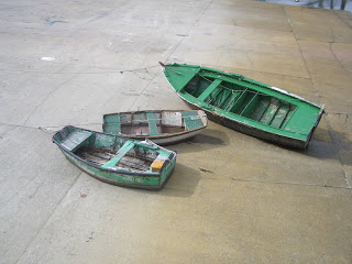 barcas Escarabote