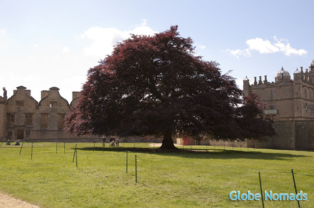 Travel, Attractions, United Kingdom, Bolsover Castle, inner courtyard