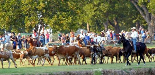 a history of cowboys and cattle drive in early texas The focus of texas cattle drives shifted the cattle drive lives on the trail drivers of texas: interesting sketches of early cowboys 2d ed.
