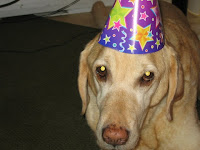 Phoenix wears a colourful party hat at Aspen's birthday party.