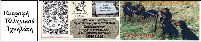 Εκτροφή Ελληνικού ιχνηλάτη