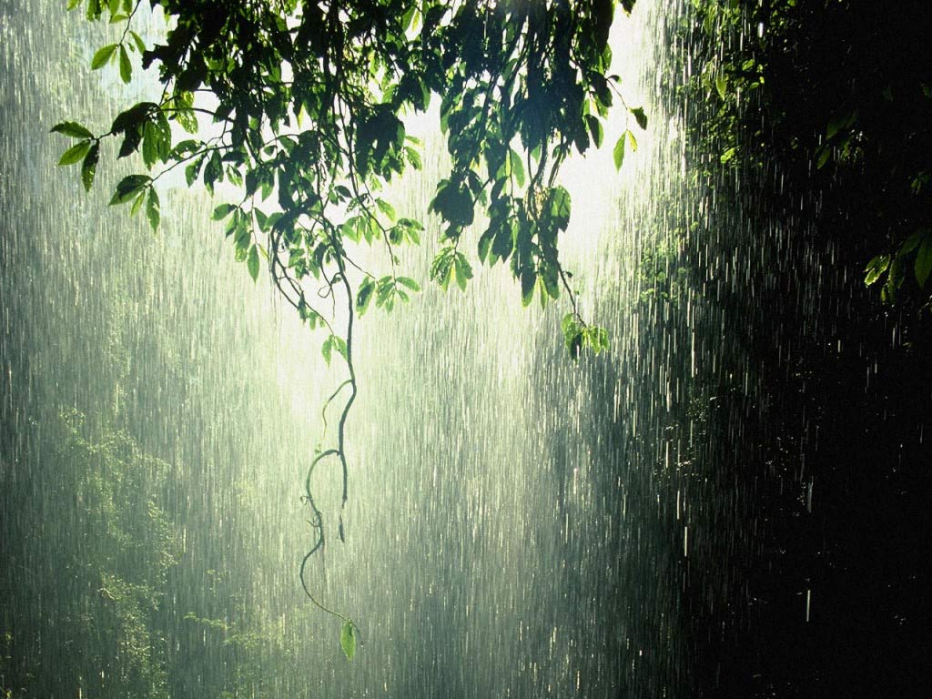 Most Beautiful Rain Photos Golberz Com