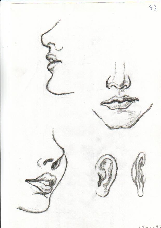 dibujos a lapiz en folios