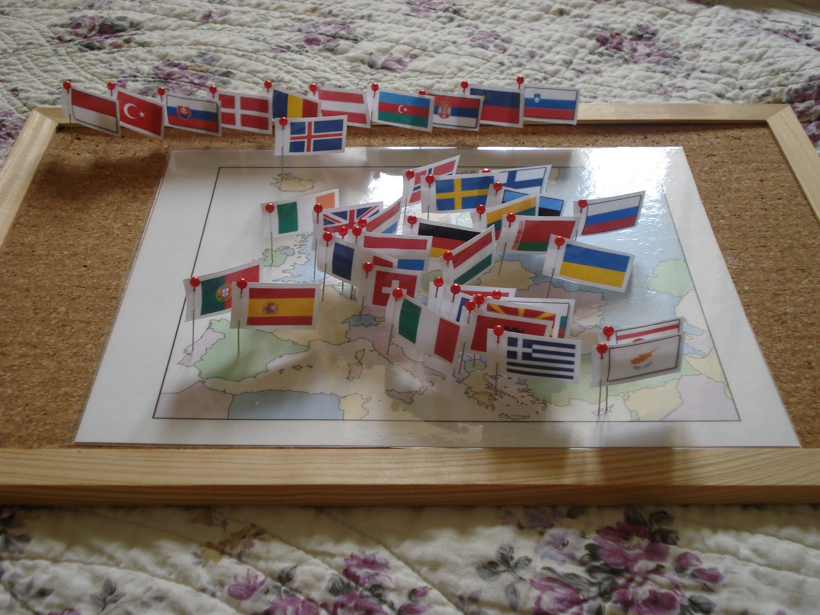 THE LEARNING ARK Elementary Montessori Pin Maps - Flag pins for maps