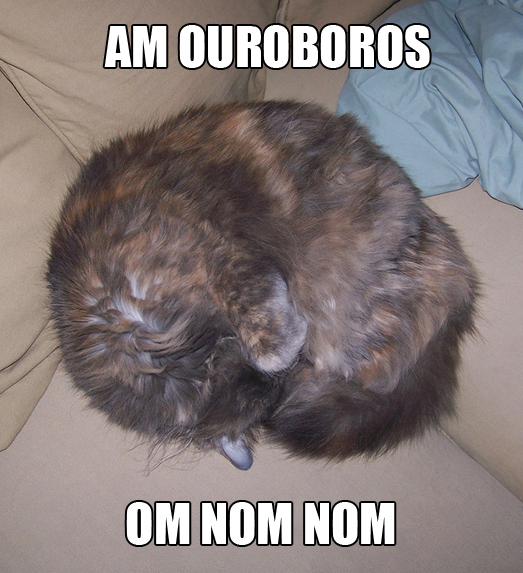 Isis is an ouroboros om nom nom cat macro by benchilada from flickr (CC-NC-SA)