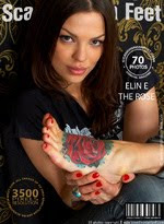 Foot Modeling Magazine Editor-in-Chief 1999-2011