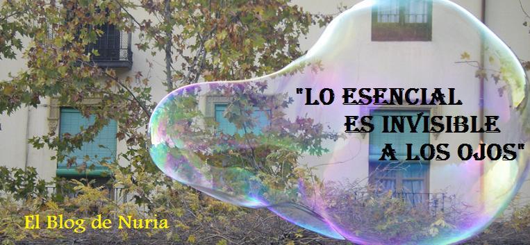 Blog de Nuria