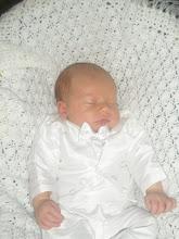 Baby Mavrik