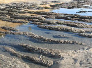 Rocks form tidal pools in the intertidal zone