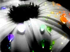 Da flor da sαudαde*