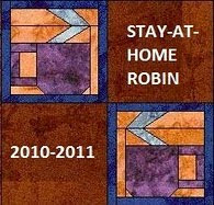 Stay at Home Robin!