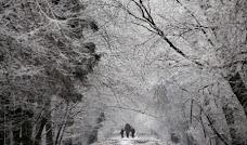 Uma mulher e 2 crianças na neve