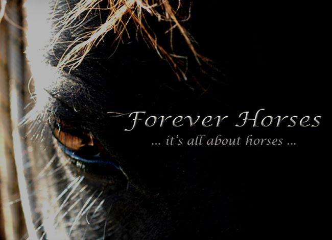 Forever Horses