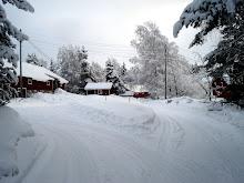 Vinter 2011