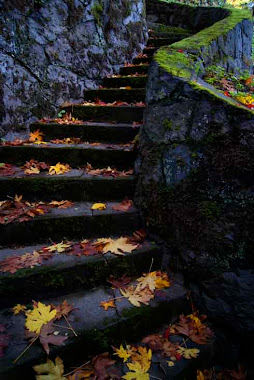 Fall Stairs