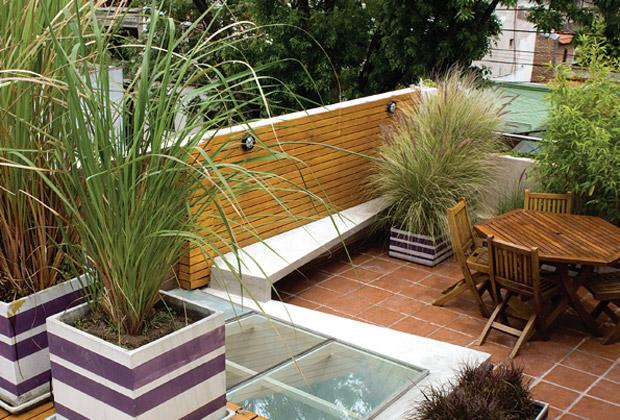 Macetas cuidado de plantas for Plantas para balcones