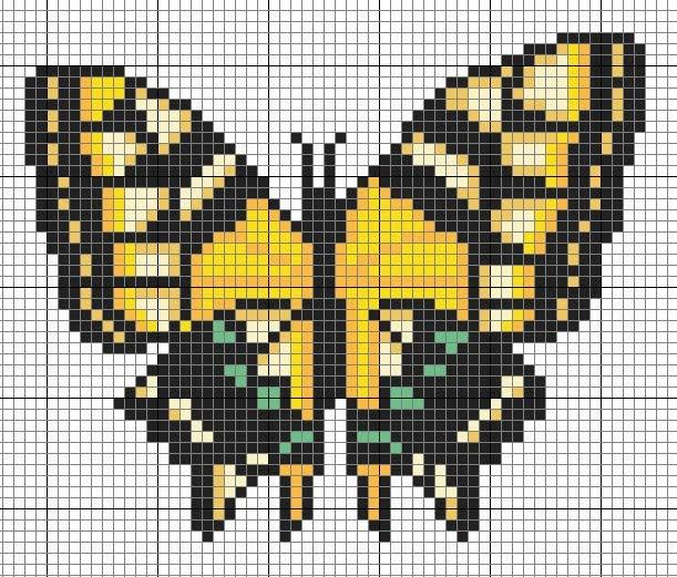 cross me not  yellow butterfly
