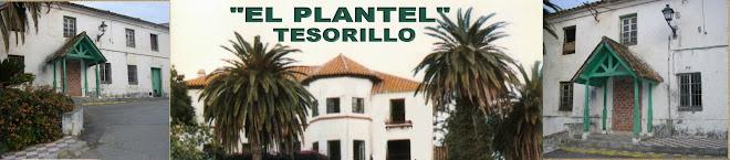 El PLANTEL TESORILLO
