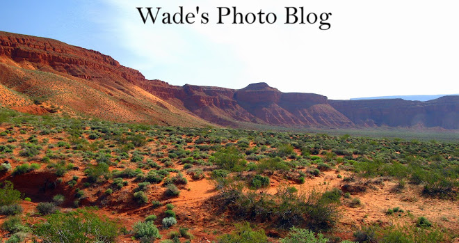 Wade's photoblog