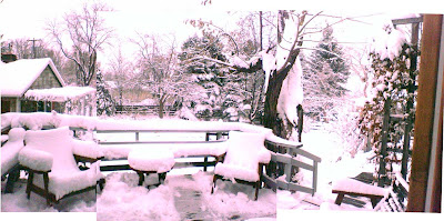 composite photo of my grandparents' backyard, very snowcovered