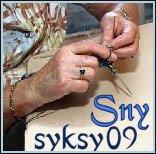 SNYsyksy2009