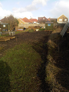 Caterham Allotment