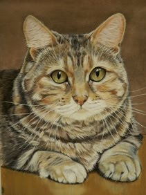 CAT PORTRAITS<br>click the picture to visit my website Cat Portrait Gallery