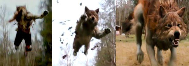 Into a Werewolf