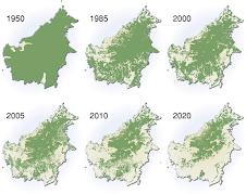 A evolução da desflorestação na Amazónia