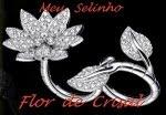 5º Selinho!  Carinho da Flor de Cristal aos Amigos Blogueiros!!