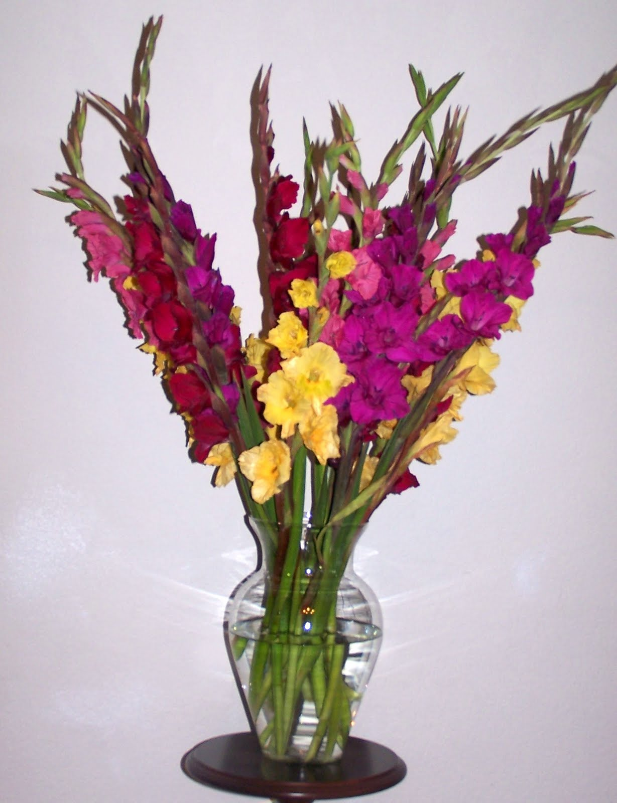 Фото букетов цветов гладиолусов