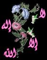 CINTAILAH ALLAH