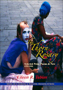 THE THORN ROSARY: Selected Prose Poems &amp; New (1998-2010)