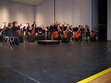 Jasmine's DRHS Orch Concert