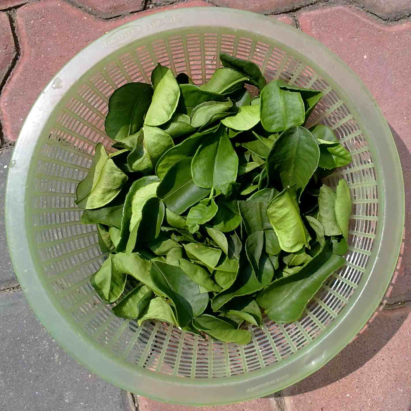 how to cook with kaffir lime leaves