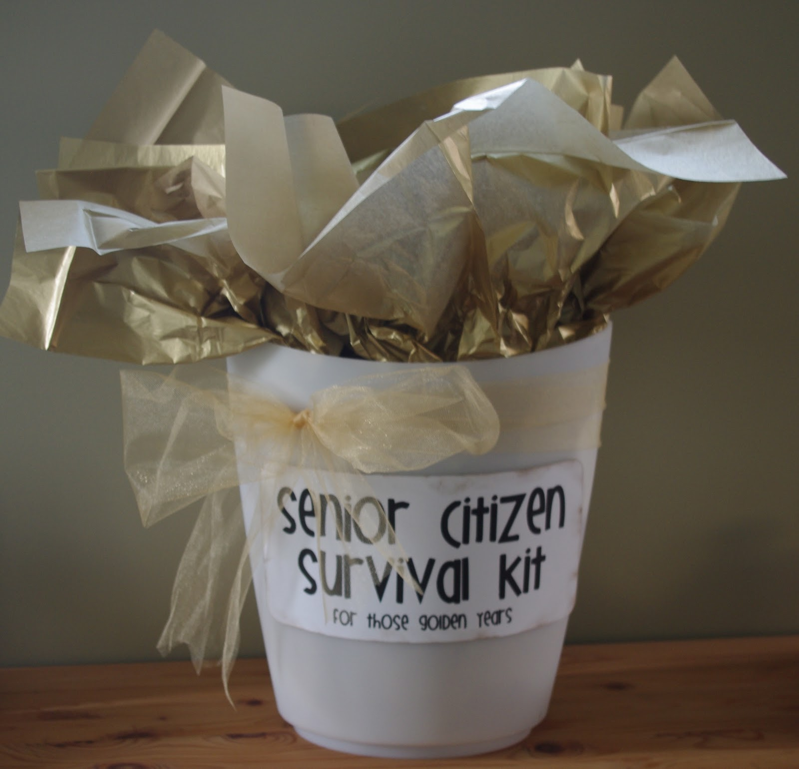 Creative Try Als Senior Citizen Survival Kit