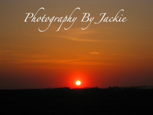 Photography By Jackie