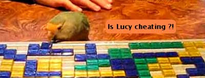 click to see Lucy play