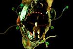escultura miceli: all nylon blog
