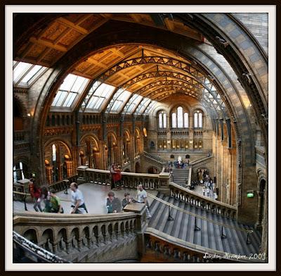 Attenborough Studio Natural History Museum