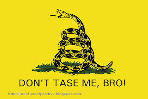 21st. Century Gadsden Flag