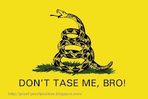 21st. Century Gadsden Flag