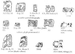 Quetzal Mayan Symbol Wildbirds Broad...