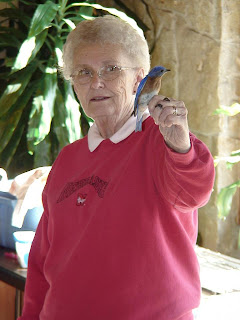 [Ruth Green holding an Eastern Bluebird]